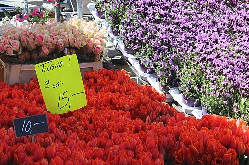 Blumenmarkt in Koge